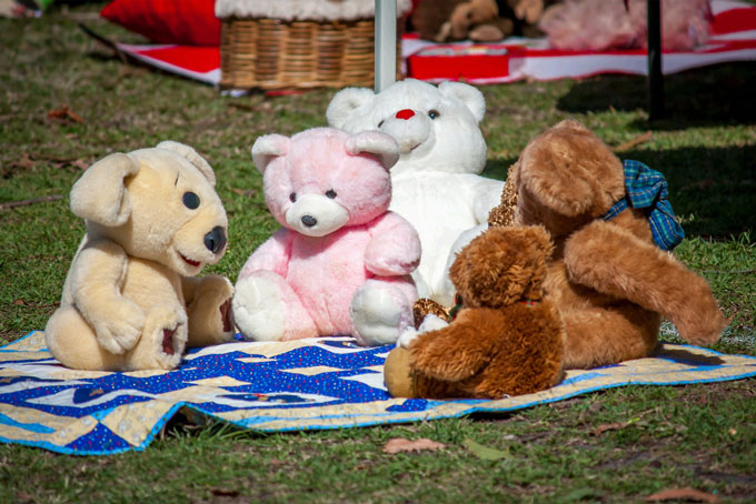 Music-group-teddy-bear-picnic